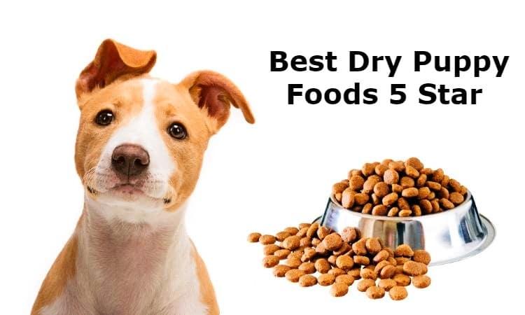 Best Dry Puppy Foods 5 Star